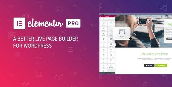 Elementor Pro WordPress Plugin